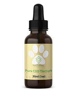 Natural Stress Solutions Pet Full Spec CBD Tincture